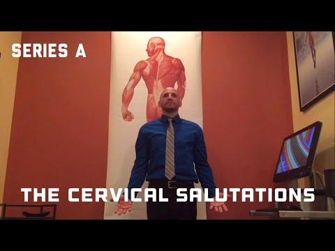 Yoga for the Neck: The Cervical Salutations- Dr. Jeremy Brook