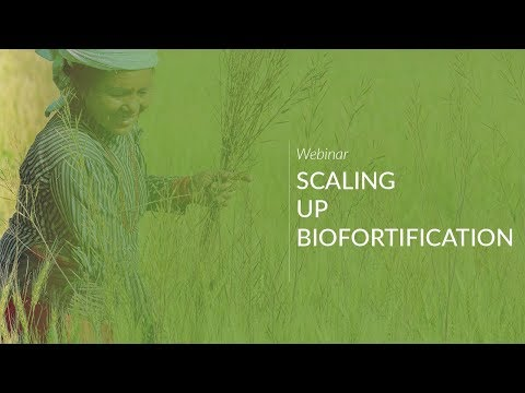 Scaling up Biofortification
