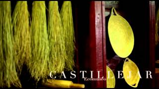 CASTILLEJAR. Proyecto ECEMED