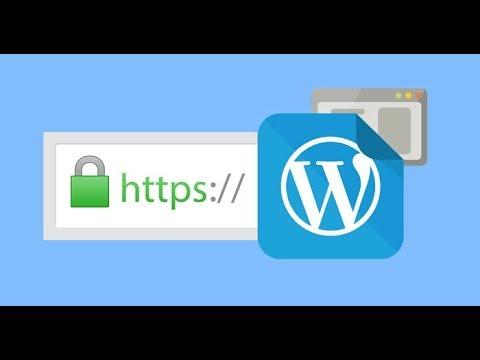 WordPress не удалось проверить ssl-сертификат сервера