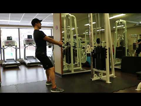 Standing Cable Row