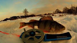 ловля окуня | зимняя рыбалка 2016 | видео ловля(Всем привет. Вот и кончился первый лед, и наступило глухозимье. В этот день окуня пришлось изрядно поискать..., 2016-12-05T17:12:11.000Z)