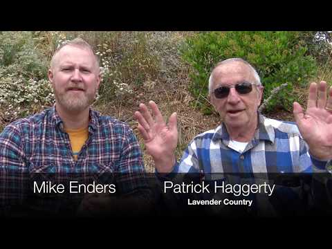 73 Yr Old Gay Punk Rock Country Singer, Patrick Haggerty of Lavender Country