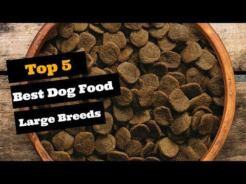 Best Dog Food For Large Breeds |Top 5 Large Breed Dog Foods.