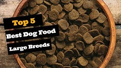 Best Dog Food for Large Breeds |Top 5 Large Breed Dog Foods.