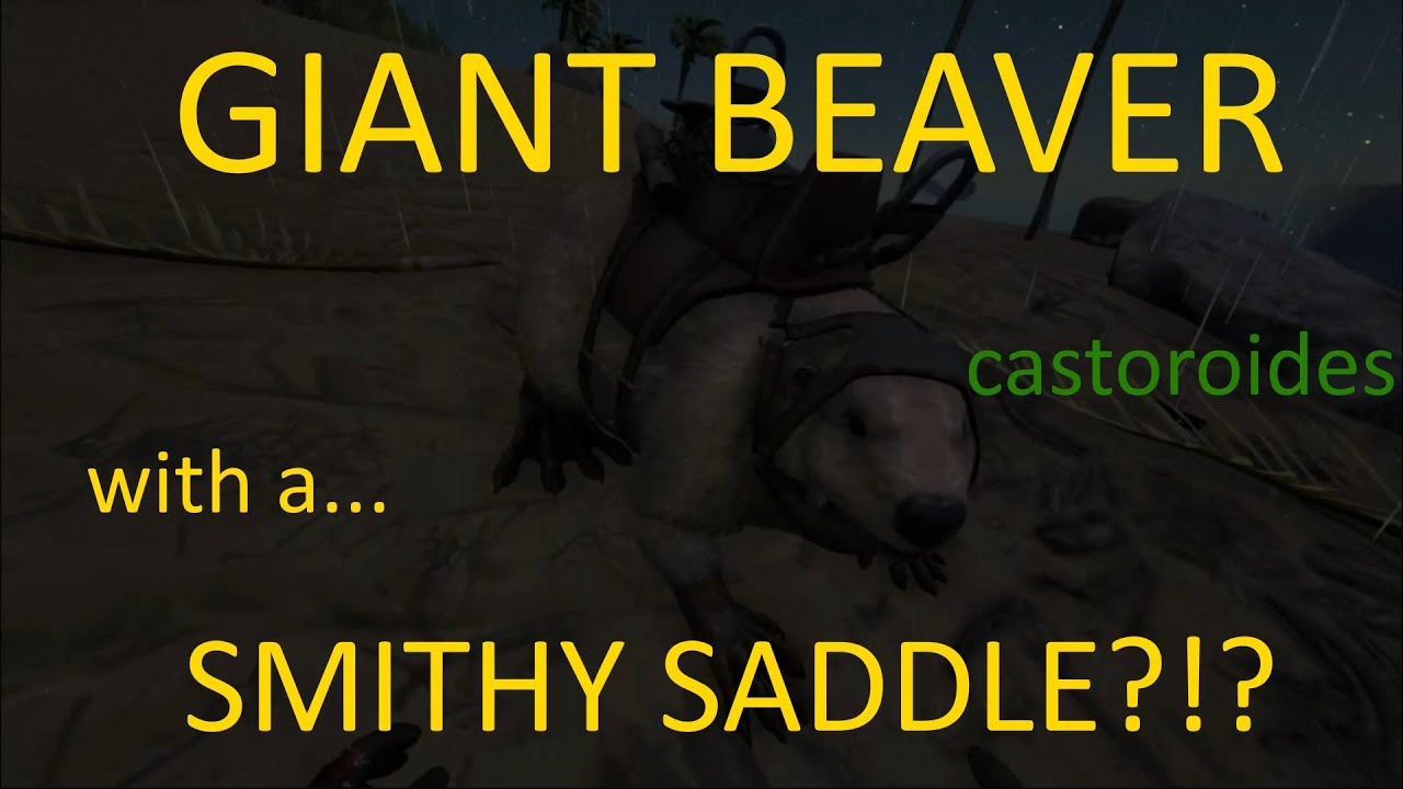 Giant beaver tame and a smithy saddle the castoroides ark rp the castoroides ark rp server ep 14 malvernweather Gallery