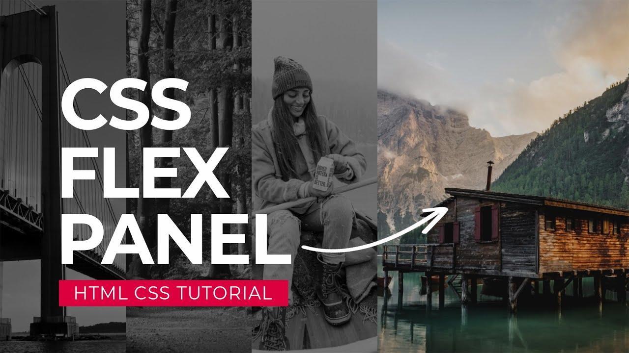 CSS Website Panel Design | Image Hover Effect | 2021
