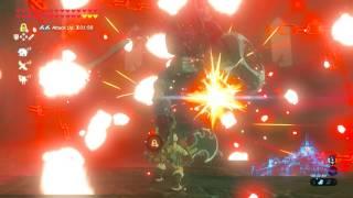 Video Zelda Breath of the Wild - Killing a Blue Maned Lynel in 10 Seconds download MP3, 3GP, MP4, WEBM, AVI, FLV Januari 2018