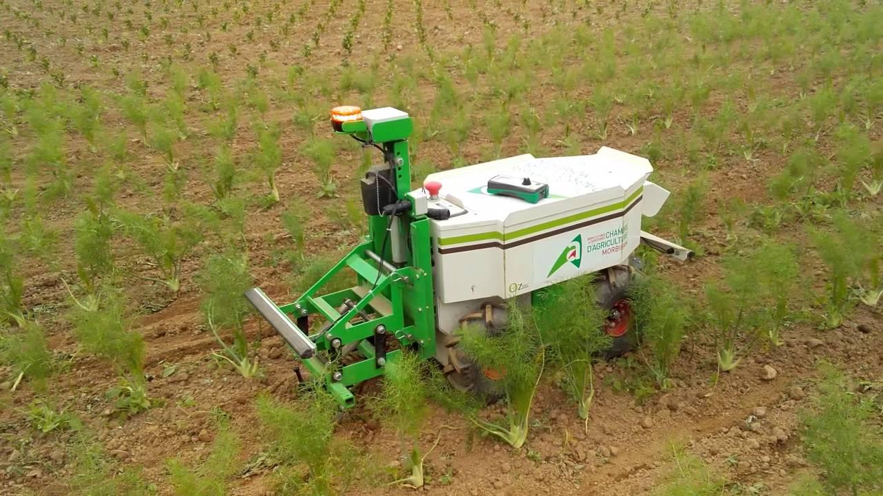 Oz le robot de d sherbage de petites parcelles youtube for Chambre agriculture ille et vilaine