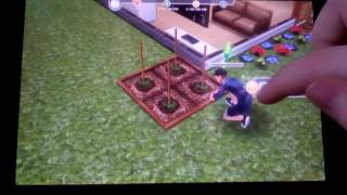 Let's play]Sims FreePlay#1.Обучение]