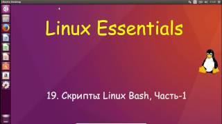 19.Linux для Начинающих - Скрипты Linux Bash, Часть-1
