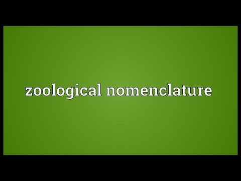 Zoological nomenclature Meaning