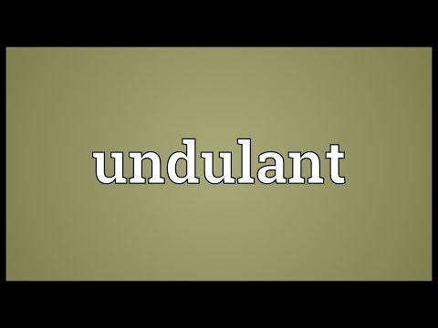 Header of undulant