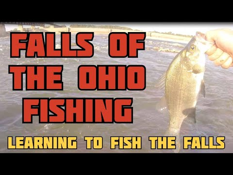 Falls Of The Ohio Fishing - Learning To Fish The Falls - White Bass