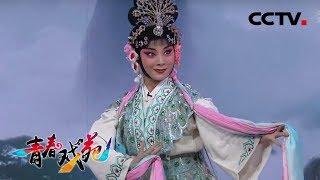 《青春戏苑》 20190903 京韵芬芳| CCTV戏曲