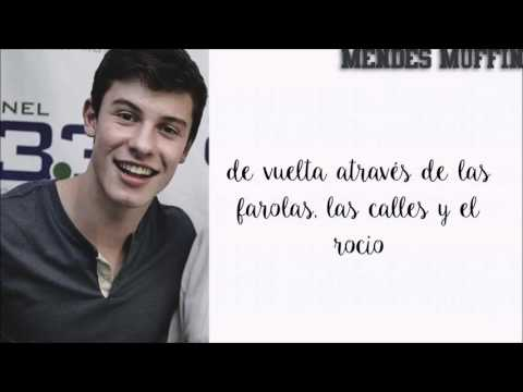Shawn Mendes - All for the stars (cover en español)