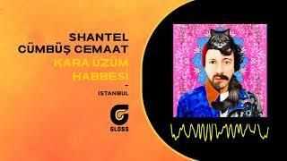 Shantel & Cümbüş Cemaat - Kara Üzüm Habbesi (İstanbul)