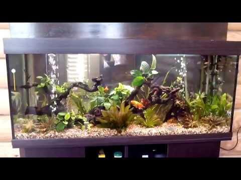Большой аквариум с живыми растениями Биодизайн Атолл 500, цвет венге 465л