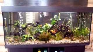 Большой аквариум с живыми растениями Биодизайн Атолл 500, цвет венге 465л(, 2015-06-03T08:21:26.000Z)