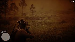 狩獵傳說郊狼《碧血狂殺 II》||《Red Dead Redemption II》(全劇情.無旁述)
