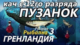 Кач с 12го разряда Пузанок / РР3 [Русская Рыбалка 3 Гренландия]