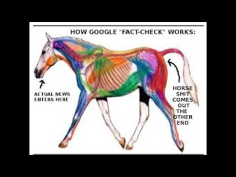 """WIT 35: Looking at Googles """"fact checking"""""""