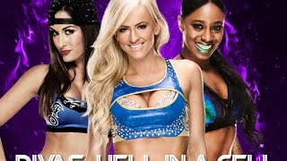 WWE 2K15 (PS4): Divas Hell in a Cell
