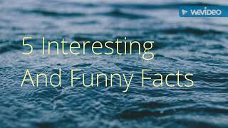 5 Interesting and Funny Random Facts.