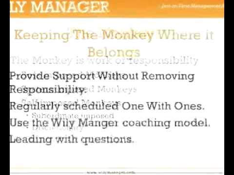 Delegating Responsibility: The Monkey on Your Back - A 3-Minute Crash Course