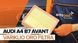 Montavimas Variklio oro filtras AUDI A4 Avant (8ED, B7): nemokamas video