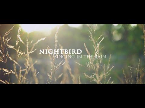 Nightbird/Singing in the rain
