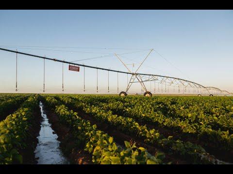 Irrigation in Sudan