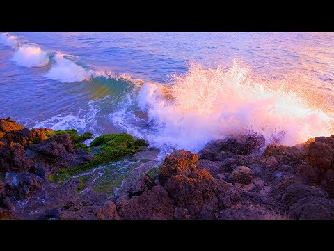 Ocean Waves for Deep Sleep, Studying, Focus | Water Sounds White Noise 10 Hours