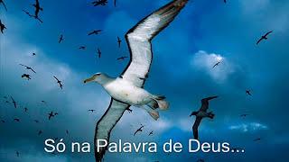 CD Completo - Cristo é a solução - Samuel de Camargo