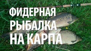 ЛОВЛЯ на ФИДЕР КАРПА - ПЛАТНАЯ РЫБАЛКА с НОРМУНДОМ ГРАБОВСКИСОМ(В видео, ловля карпа на фидер. Как поймать карпа фидерной снастью на платной рыбалке в Латвии, используемая..., 2015-08-05T10:46:00.000Z)