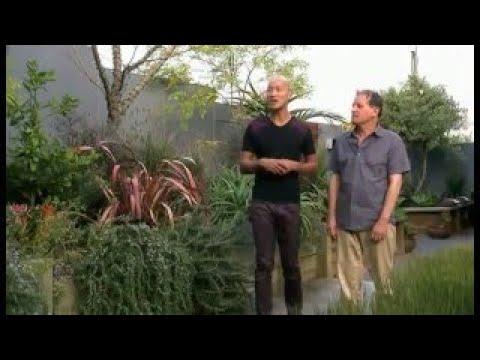 Worlds Greenest Homes Season 2 10of19 Haus W Ac3 Btn
