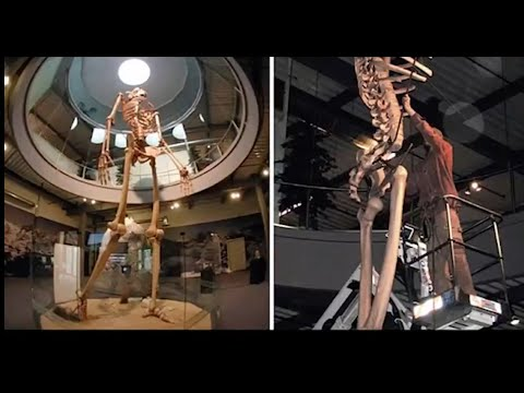Smithsonian Cover Up of the Nephilim or Giants