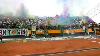 Wow! Singa mania SRIWIJAYA FC VS BHAYANGKARA FC