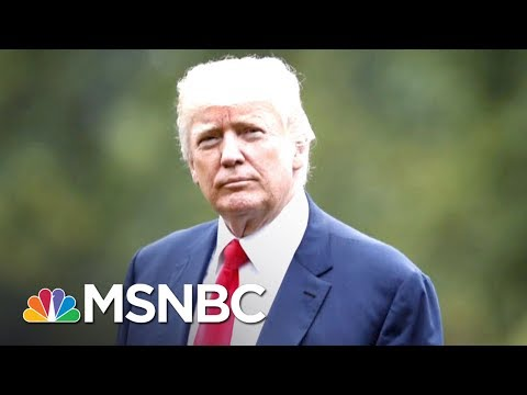 Donald Trump To Dreamers: 'Tell 'Em Not To Worry' About Deportation | The Last Word | MSNBC