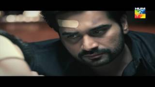 Tital Song Pakistani TV Drama | Bin Roye