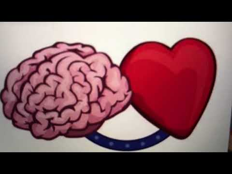 What is the Heart-Brain Connection?
