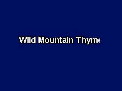 Wild Mountain Thyme, Karaoke video with lyrics, Instrumental version
