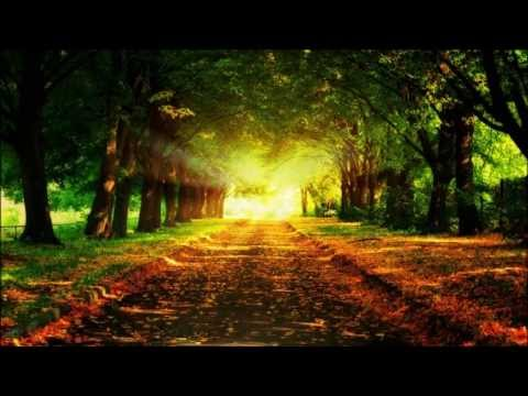The Long and Winding Road - By the Beatles (instrumental)
