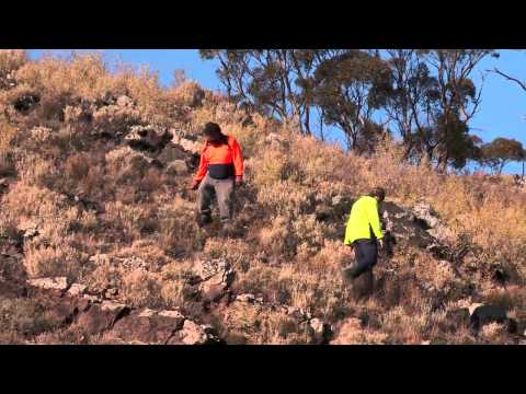 Aboriginal Heritage Training and Safety Video