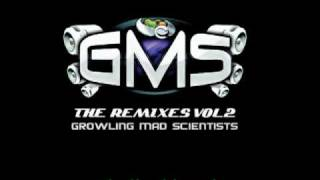 GMS Who Da Funk Feat. Jessica Eve - Shiny Disco Balls (GMS Remix)