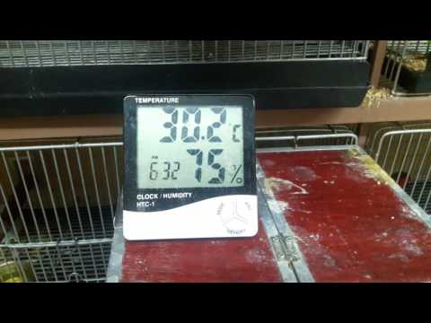 temp and humidity
