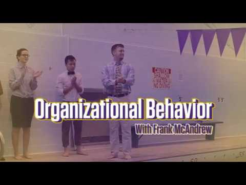 Sink or Swim? A Look Inside Organizational Behavior