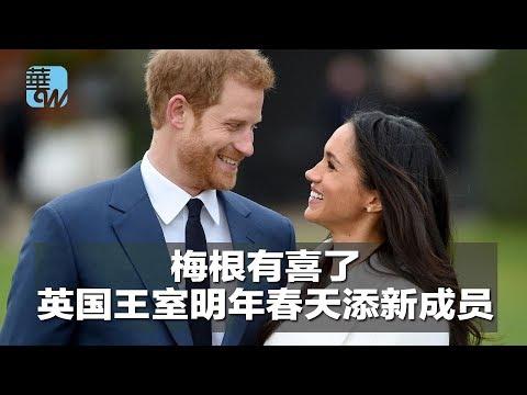 华尔街电视新闻|梅根有喜了,英国王室明年春天添新成员(20181015)