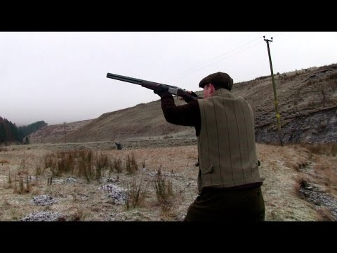 The Shooting Show - pheasant in the borders, British Shooting Show and Zoli guns