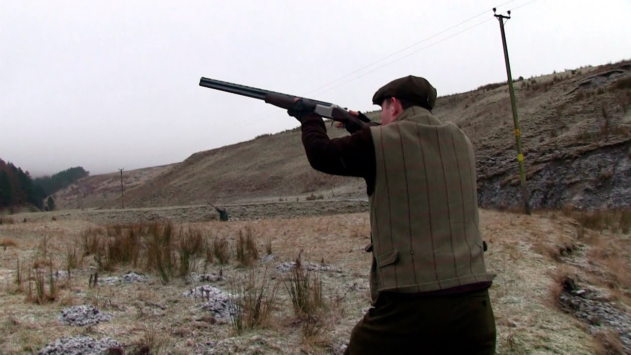 The Shooting Show - pheasant in the borders, British ...
